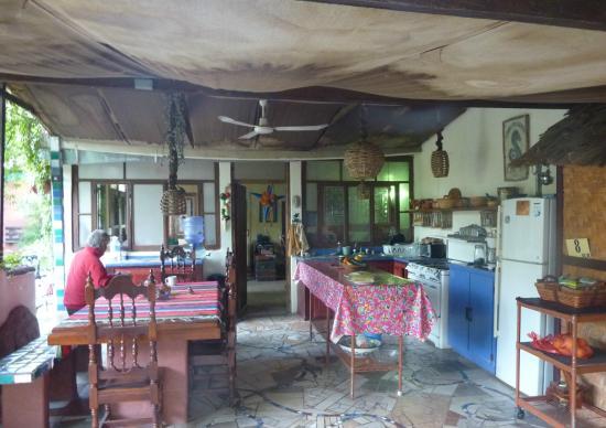 cuisine ouverte sur le jardin picture of la damiana inn loreto tripadvisor. Black Bedroom Furniture Sets. Home Design Ideas