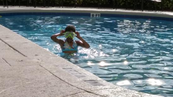Hilton Garden Inn - Orlando North/Lake Mary: Fun in the Pool