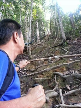Mount Santubong: Climbing all the way up