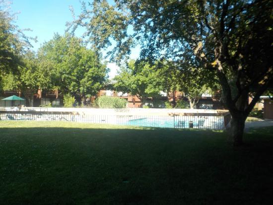 Best Western Sunridge Inn : Pool