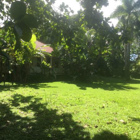 Haiku Plantation Inn: Maui Bed and Breakfast: garden