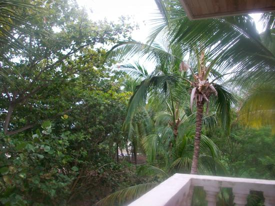 Mendihuaca Caribbean Resort: Vista de La Habitacion