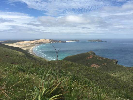 Cape Reinga Adventures Day Tours : The Cape