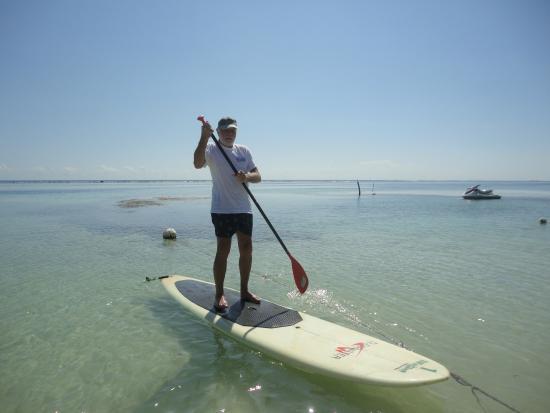 Surfinggreen: Paddle Boarding 3
