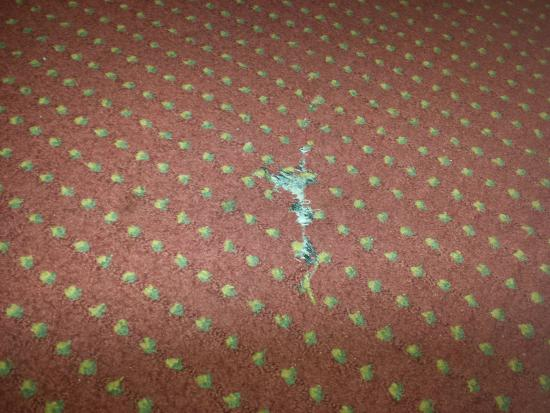 Hotel V: Holes in carpet