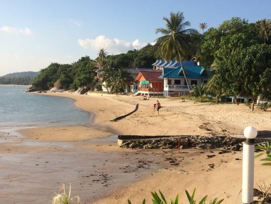 Phangan Orchid Resort: un vue imprenable sur une mer dégoûtante et un énorme tuyaux noir qui sort de terre