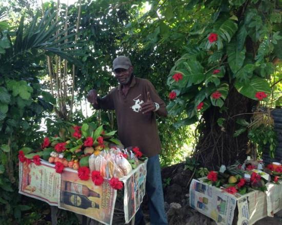 Yardie Tours Jamaica Review