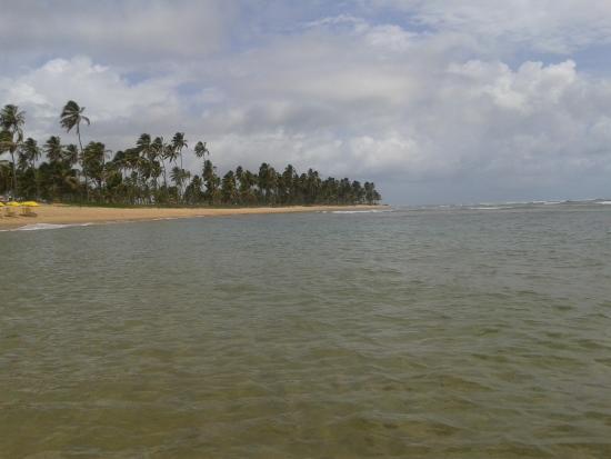 Pousada Casa De Praia: piscina natural