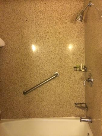 Doubletree Houston Intercontinental Airport : Clean shower - but that darn hand rail is in the worst spot - Room 720