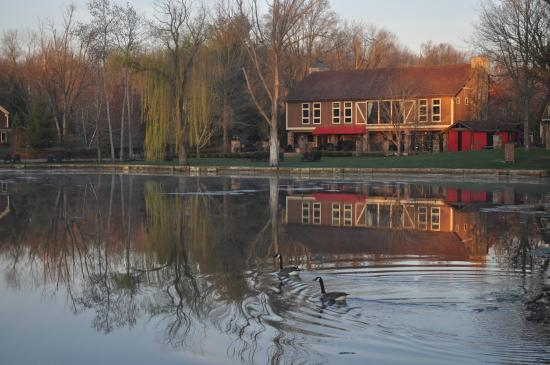 The Villas at Gervasi Vineyard : Very peaceful