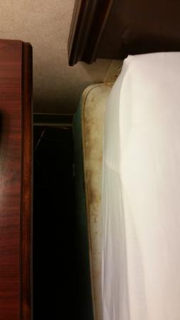 Mountain Melodies Inn : mattress