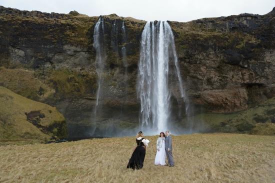Pink Iceland Day Tours: Seljalandsfoss Waterfall