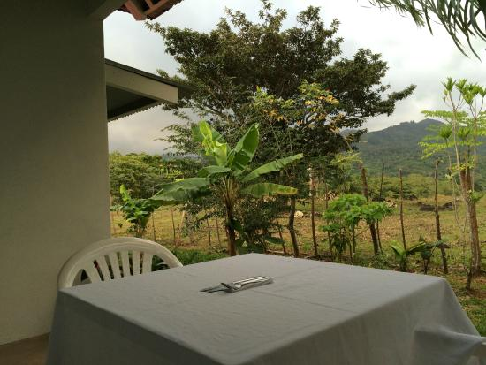 Coffee Mountain Inn : Balcony for room #1