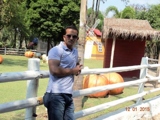 Sriracha Tiger Zoo: Park inside the Zoo