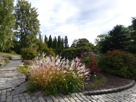 Botanisk Hage - Picture of Botanical Gardens (Botanisk Hage og Museum ...