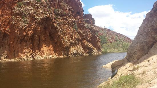 Glen Helen Gorge: Beautiful swimming hole.