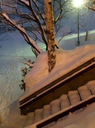 Villa Alpen: night skiing outside
