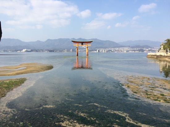 Hotel Active Hiroshima: 宮島まで、ホテルから1時間