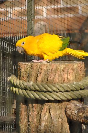Zoo Boise: Un Joli spécimen