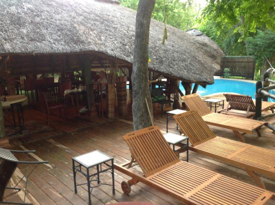 Selous Serena Camp: A view of dining area and pool