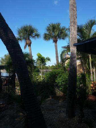 Turtle Beach Resort: view towards the lagoon