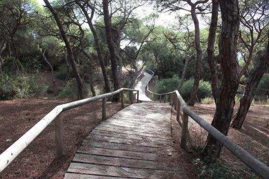 Parque Serra Do Curral: Fotos de sim