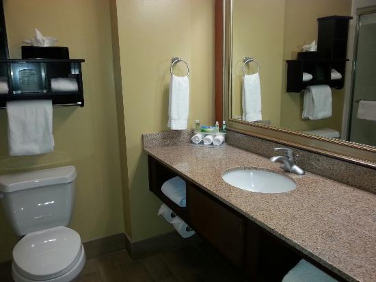 Holiday Inn Express & Suites Huntsville Airport: Bathroom