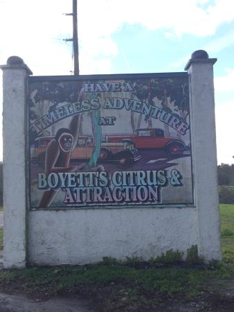 Boyett's Grove : Found it!!