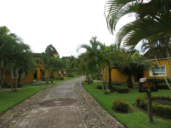 Amatique Bay Resort & Marina: Grounds