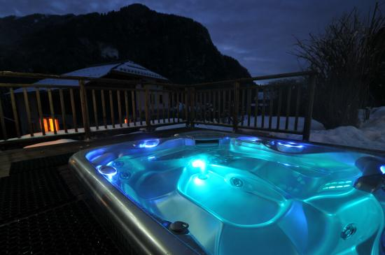 Maison La Cerisaie : Hot tub