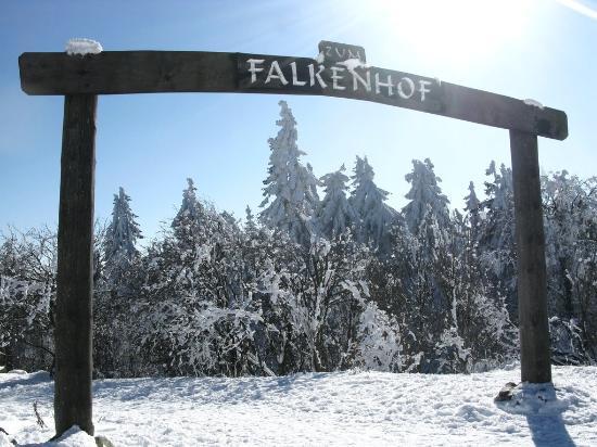 Falkenhof Grosser Feldberg