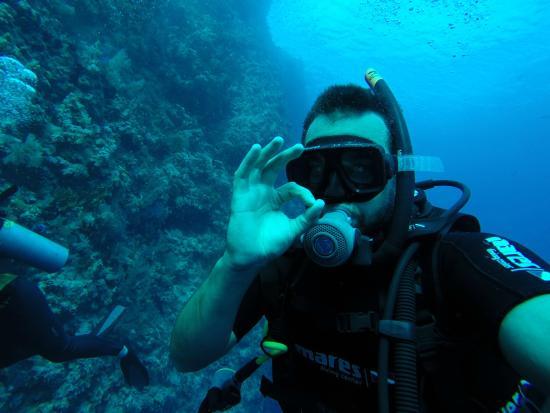 Ok picture of reef oasis dive club sharm el sheikh - Reef oasis dive club ...
