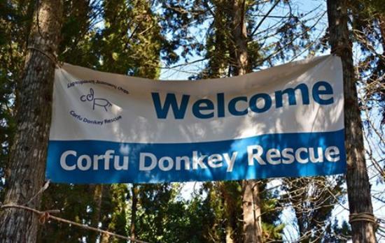 Corfu Donkey Rescue (Paleokastritsa, Grekland) - omdömen