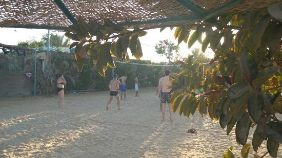 MinaMark Beach Resort : Volleyball