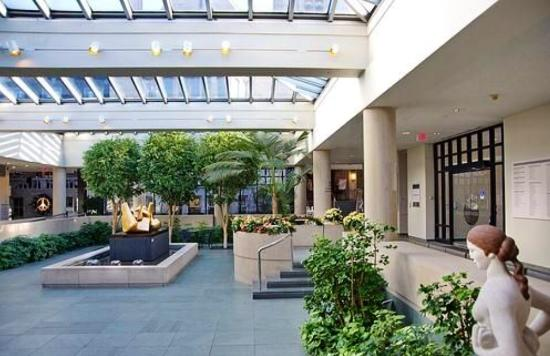 Memorial Art Gallery : Interior courtyard, bathed in natural light.