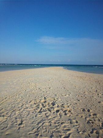 Okaneku Coast: 12月の百合が浜。 この日は風が強くて肌寒かった。