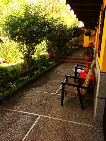 Hotel Cacique Inn: Nice place to sit outside your door and enjoy nature