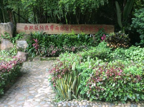 Xishuangbanna Tropical Nature reserve: entrance