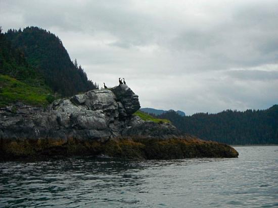 Kenai Fjords Wilderness Lodge照片
