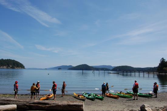 Mayne Island Resort : Our beach