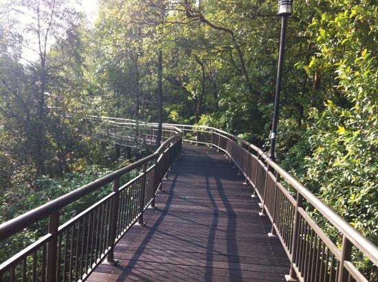 how to go to kent ridge park