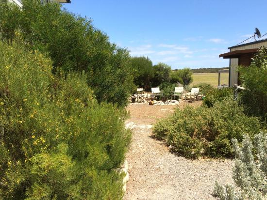 Marion Bay Seaside Apartments: part of backyard grounds