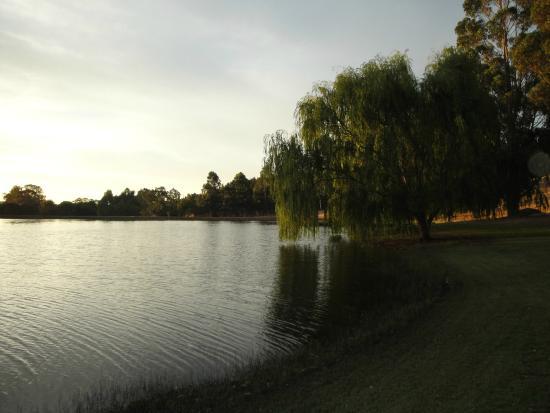 Glenlynn Cottages: Lovely lake