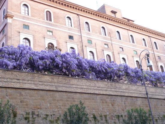 Rome As You Like It: Дома на Виа Мецената