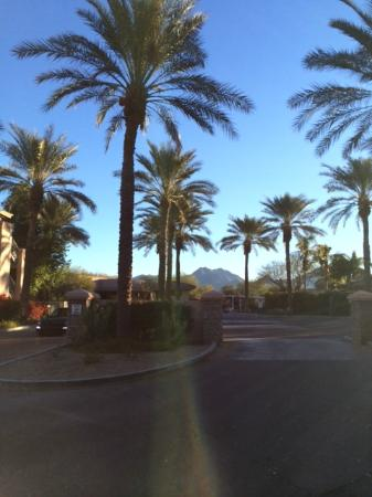 Scottsdale Links Resort: View on our morning walk!