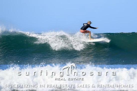 This is my brother relearning to surf the surf simply way after 40 years of not surfing