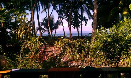 Cabinas Los Cocos : View from the cabin terrace.