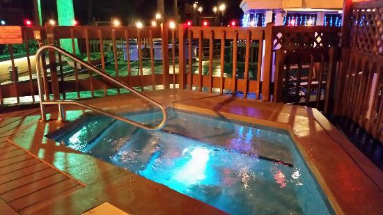 Tree Tops Resort: hot tub