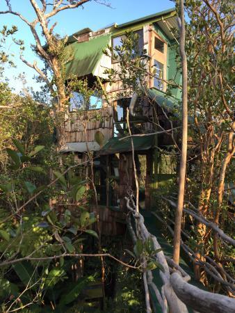 Treehouse Skye: Treehouse #2