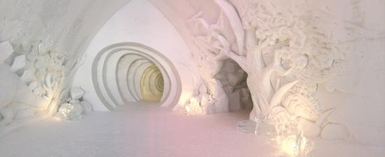 Hotel de Glace: Some of the carvings